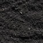 Чернозем от компании «ГК СЛОН» по выгодным ценам